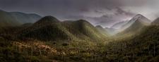 reserva-de-la-biosfera-tehuacan-cuicatlan-1